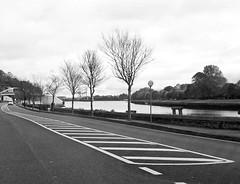 100_8114 (MiDEA foto projekt : Hollace M Metzger) Tags: countycork ireland munster republicofireland éire airlann contaechorcaí