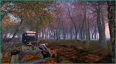 Endormi ... (Tim Deschanel) Tags: tim deschanel sl second life paysage landscape exploration arbre tree missing melody aftershock faon animal voiture car