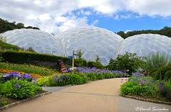 Eden Biomes (Dave Snowdon (Wipeout Dave)) Tags: davidsnowdonphotography canoneos80d cornwall theedenproject biomes grimshawarchitects architecture buildings gardens