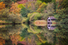 Rydal Water (Rich Walker75) Tags: autumn reflection reflections lake lakes lakedistrict landscape landscapes landscapephotography trees colour orange green yellow red canon england efs1585mmisusm eos eos80d
