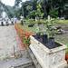 Aula de Jardinagem