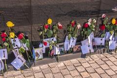 Vietnam Wall 5 (www78) Tags: washington dc district columbia vietnam wall mall veterans memorial