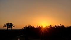 Capvespre (bertanuri bcn) Tags: catalonien catalogne cataluña catalonia cat catalunya sunset capvespre atardecer lgg6 lg phone photography objetivoexplored explore sol soleil sun airport bcn barcelona