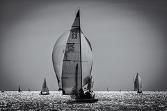 Classic Beauty (Kostas Karageorgiou) Tags: sailing 55 meter rule spinnaker athens saronic bay greece sea yachting racing boat classic canon eos 5d mk iv ef70200mm f28l is ii usm downwind black an white bw monochrome