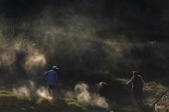 Smoke (hilmi_cskn) Tags: smoke people work worker working workers olympus omd m43 light