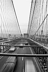 Brooklyn Bridge🌉 (Cecilia Mussoni) Tags: brooklyn bridge ny newyork america photo photographer photography streetphotography street landscape skyline adventure travel trip travelling black white