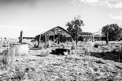 Eden, Wyoming (paccode) Tags: solemn shack landscape bushes brush blackwhite quiet tree creepy home wreck summer abandoned barn monochrome wyoming farm house field sky scary d850 forgotten serious fence farson unitedstates us