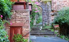 Scorcio con gatto (Raffa2112) Tags: francia france fiori gatto scale mattonirossi redbricks flowers cat stairs canoneos750d raffa2112 courtyard