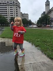 DC Tiny Activist