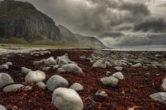 The red weed (wimvandemeerendonk, just got back from Iceland) Tags: lofoten eggum beach rocks pebbles mountains norway clouds cloud cloudscape cliff landscape mountain mountainscape nature outdoors outdoor ocean oceaan panorama rock sony sky scenic wimvandem water astoundingimage golddragon daarklands