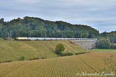 Rem 487 001, Gümmenen (CH) (Alexandre Zanello) Tags: rem487 traxx bombardier lastmile swiss rail traffic srt rübenzug gümmenen bls suisse schweiz svizzera svizra switzerland