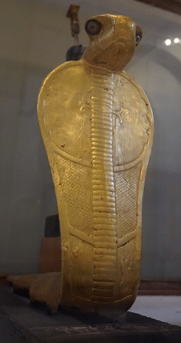 Cobra (Naja), Egyptian Museum & Royal Mummies Hall, Cairo, Egypt.