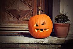 guardian (Ralaphotography) Tags: autumn fall herbst halloween pumpkin door october orange brown light sunny kürbis season outdoor