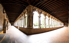 """Musée des Augustins de Toulouse, fine art colour panorama of the gorgeous cloister flooded with autumn light, Toulouse, Haute-Garonne, Occitanie, France (grumpybaldprof) Tags: toulouse hautegaronne occitanie france """"4thlargestfrenchcity"""" tolosa airbus thales astrium """"southernfrance"""" """"lagaronne"""" """"garonneriver"""" """"muséedesaugustinsdetoulouse"""" """"muséedesaugustins"""" """"middleages"""" occitan romanesque sculptures statues art gothic 1309 """"augustinianconvent"""" secularised 1793 """"frenchrevolution"""" museum 1795 """"monumenthistorique"""" cloister garden church gargoyles """"fineart"""" striking artistic interpretation impressionist stylistic style contrast shadow bright dark black white illuminated light beams canon 80d """"canon80d"""" tamron 16300 16300mm """"tamron16300mmf3563diiivcpzdb016"""""""
