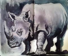 Day 23. Muddy white rhino (sushipulla) Tags: inktober2018 inktober inkwash muddy whiterhino endangeredspecies inked wildlife