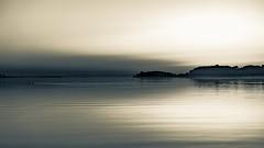 auf_der_freiheit_v2_sw (Leif Junghans) Tags: schleswig schlei freiheit sunrise sonnenaufgang
