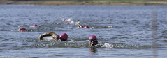 "Cairns Crocs Lake Tinaroo Triathlon-Swim Leg • <a style=""font-size:0.8em;"" href=""http://www.flickr.com/photos/146187037@N03/44678563105/"" target=""_blank"">View on Flickr</a>"