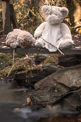 bro (englishgolfer) Tags: bron bridge teddy bears poohsticks puhpinnar nikon d7500 tamron 1750mm fs181021 fotosondag fotosöndag