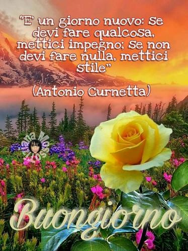 Link Buongiorno Page Facebook Tiziana Mosso Buona Giornata