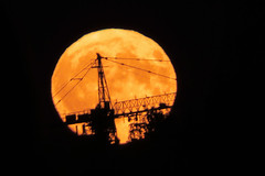 I'm still in love with you (Reva G) Tags: northshore ambleside westvancouver bc moon orange yellow full harvestmoon gold silhouette crane