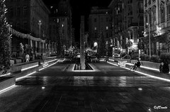 La notte in città (danilocolombo69) Tags: laspezia istallazioni piazza acqua nikonclubit danilocolombo luci notte danilocolombo69 alberi bw
