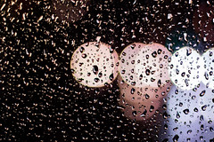 20181029 Heden busshållplatsen nattfoto (Sina Farhat - Webcoast) Tags: light ljus gothenborg göteborg sweden sverige autumn höst fall evening heden busshållplats buss bus rain regn 031 bokeh skärpedjup canon50d canon50mm14usm raw photoshopccclassic