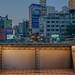 Taichung High Line