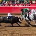 bullfights2018-005