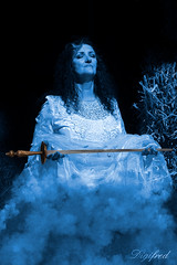 The power of fantasy. (Digifred.nl) Tags: digifred 2018 nikond500 netherlands nederland fantasy portrait portret costume fairy beauty cosplay fantasyevent zwaard rook sword smoke