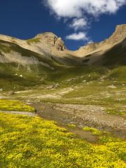 033 - dolce mormorio (TFRARUG) Tags: formazza valrossa mut brunni alps alpi mountains montagne trekking landscapes toggia sangiacomo