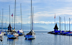 Port de Morges (Diegojack) Tags: vaud suisse morges d500 nikon nikonpassion paysages léman lac port bateaux voiliers reflets groupenuagesetciel fabuleuse