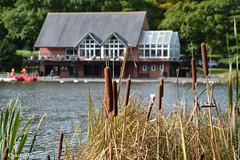 Photo of The Lake, Llandrindod Wells