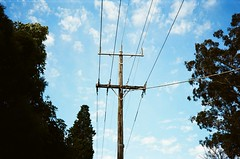 Power lines pole (Matthew Paul Argall) Tags: olympusam100 35mmfilm kodakultramax400 kodak400 ultramax 400isofilm powerlines powerlinespole