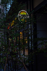 Autumn Sketchbook (shmc5hamer) Tags: kyoto autumn colour night