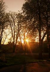 Autumn sunrise (Dun.can) Tags: sunrise autumn trees sun nottinghamroad light meltonmowbray leicestershire