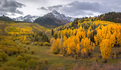Aspen Valley (Hilton Chen) Tags: aspenvalley autumn creek fallcolors landscape sanjuanmountains colorado sunrise panorama mountsneffels aspentrees countyroad7 ridgway unitedstates us
