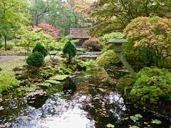 The Japanese garden of The Hague (Frans Schmit) Tags: japanesegarden japansetuin clingendael autumn fransschmit thehague denhaag
