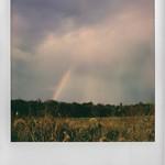Roid Rainbow thumbnail