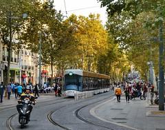 Street scene (sander_sloots) Tags: tram marseille scooter street scene straat trees bomen people mensen bombardier flexity outlook tramway rtm rails tracks