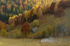 Smoke on the valley (Baubec Izzet) Tags: baubecizzet pentax landscape nature autumn trees valley