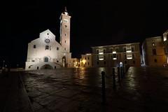 """Trani IT - """"Una serata a Trani"""" (Fabrizio Lucchese 1') Tags: trani puglia pioggia italia notturno bw monochrome riflessi canon760d fabriziolucchese italy italien cattedrale"""