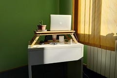 office (the tin drummer) Tags: office desk laptop apple cactus light matchingcolors