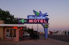 The Blue Swallow (dangr.dave) Tags: tucumcari nm newmexico route66 historic downtown architecture neon neonsign blueswallowmotel