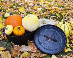 Dutch oven Pumpkins (UtahScouts) Tags: pumpkin dutchoven barebones voiceofscouting thanksgiving fall recipes