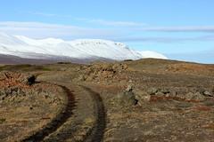 Winter is coming (Freyja H.) Tags: iceland northiceland aðaldalur kinnarfjöll sandur hraun snjór sand lava snow mountain fall autumn