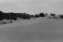 Le vent aime dépeigner les dunes (laetitia.delbreil) Tags: film filmphotography bn nb bw argentique analogico análogo analogue ishootfilm filmisback filmisawesome filmisnotdead rangefinder telemetrica olympus olympus35rc zuiko42mm128 rolleirpx iso400 westillcare fixedfocallength calais france dunes jesuisargentique analogsoul believeinfilm 35mm vintagecamera oyat sand