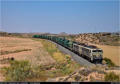 Límite (Trenes2000) Tags: trenes tren renfe 269 269355 carbonero tarragona samper desierto electricas tandem carbon mercancias mercante tolvas trenes2000 japonesas japo pantone escatron