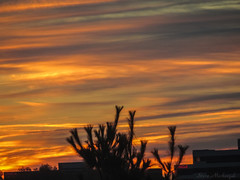 Burlington MA Sunrise_8726 (smack53) Tags: smack53 sunrise morning morningsky paintedsky sky clouds autumn autumnseason fall fallseason burlington massachusetts canon powershot sx530hs canonpowershotsx530hs