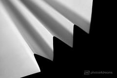 folded (photos4dreams) Tags: crinkledwrinkledfoldedorcreased macromondays macro macrolens gefaltet fächer photos4dreams p4d photos4dreamz fan