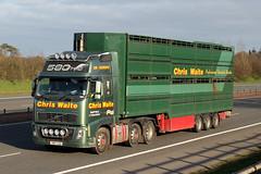 YN56 CUU (Cumberland Patriot) Tags: chris waite professional livestock hauliers driffield east yorkshire transport haulage volvo fh fh16 580 globetrotter xl yn56cuu artic articulated unit tractor tuck wagon lorry derv diesel engine road vehicle green trailer